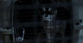 "True Blood Season 5 ""Save Yourself"" - Wolf Emma Garza"